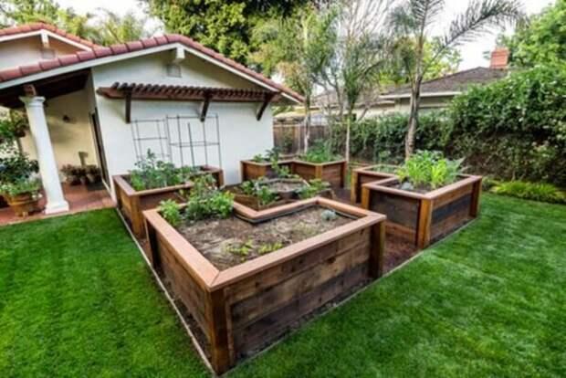 Советы По Огородничеству На Вашем Заднем Дворе