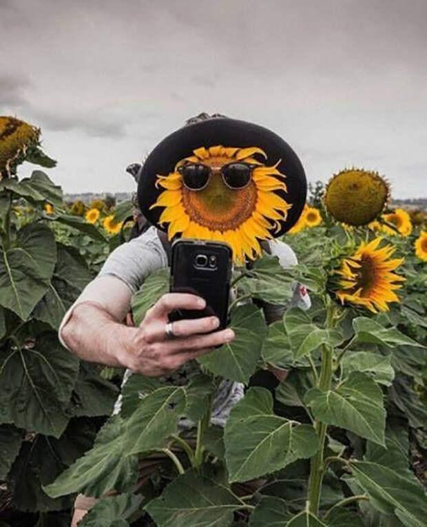 Забавные фото приколы и смешные картинки из жизни (11 фото)