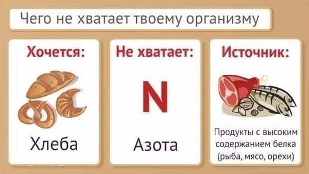 vitaminy-neobhodimye-organizmu4