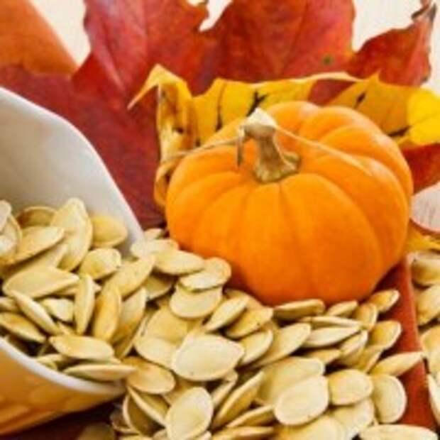 Семечки круглой тыквы - самый полезный продукт