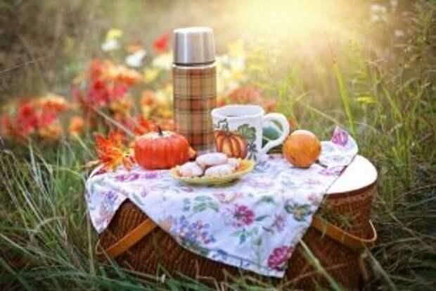 Заглядываем в недалёкое будущее и отправляемся на пикник