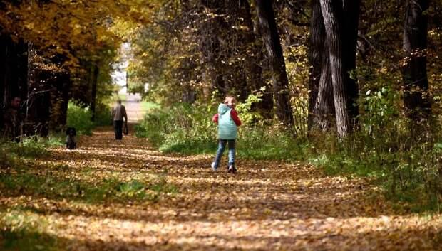 Листопад в Московском регионе закончится в октябре