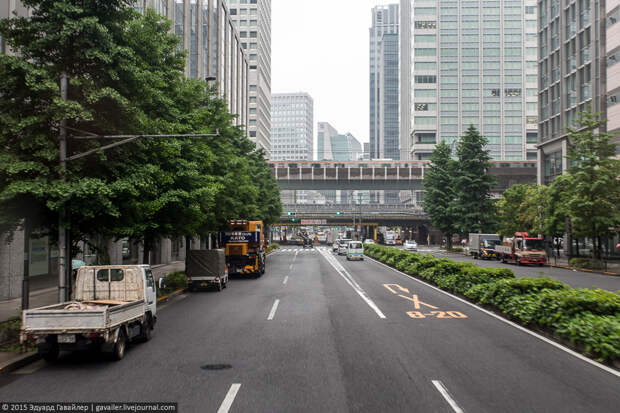 Как научиться ориентироваться в Токио за 48 часов
