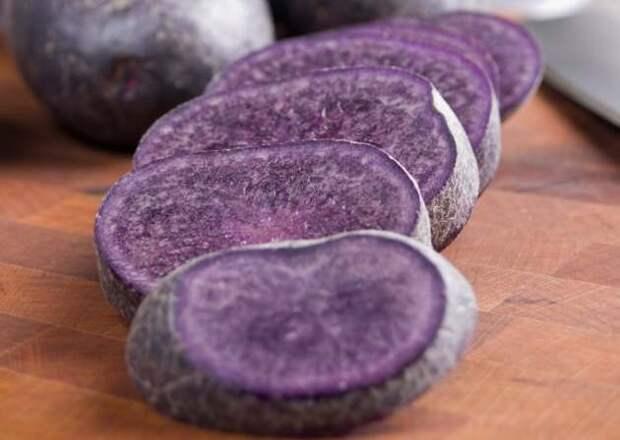 Цветной картофель: имеет ли смысл выращивать?