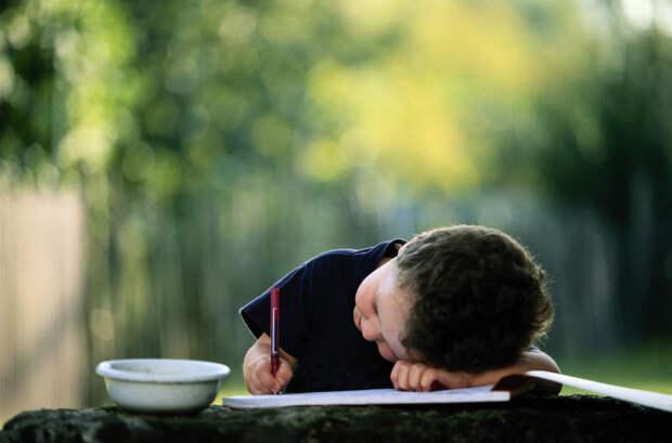 Использование некоторых секретов сделает процесс обучения Вашего ребенка проще и понятнее.
