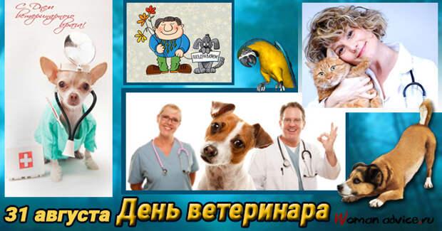 День ветеринара — 31 августа 2020 года