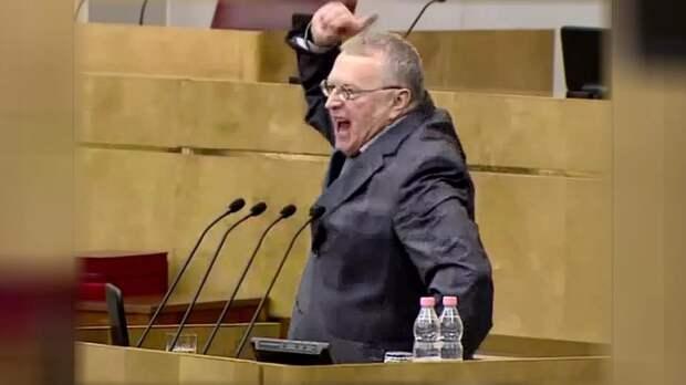 Жириновский призвал парламент ужесточить правила содержания животных
