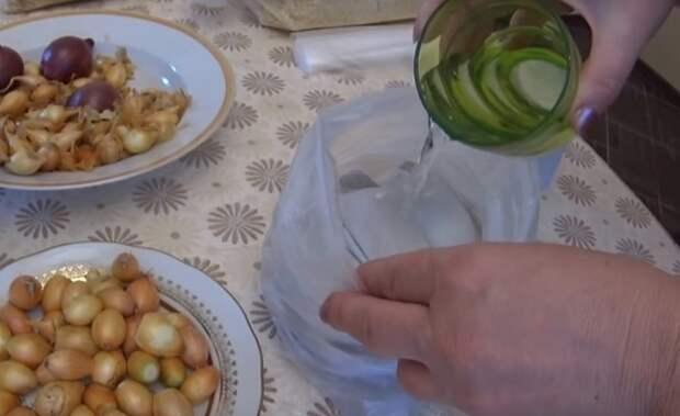 как выращивать лук из севка