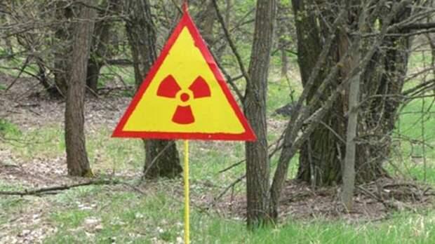 Ученые доказали пользу радиации для организма