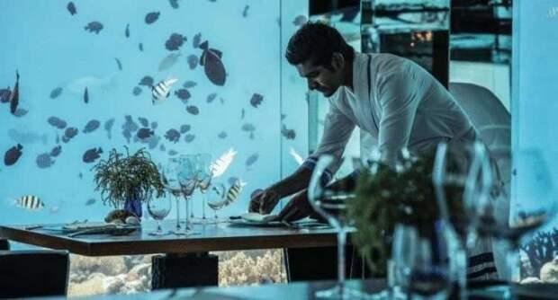 11 сказочных подводных ресторанов, которые надо посетить хотя бы раз в жизни