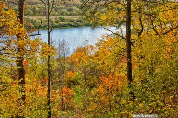 Золотая осень в Поленово