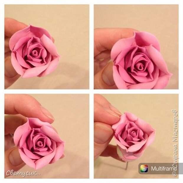 Мастер-класс Флористика искусственная Лепка МК розы из ХФ как и обещала Фарфор холодный фото 15