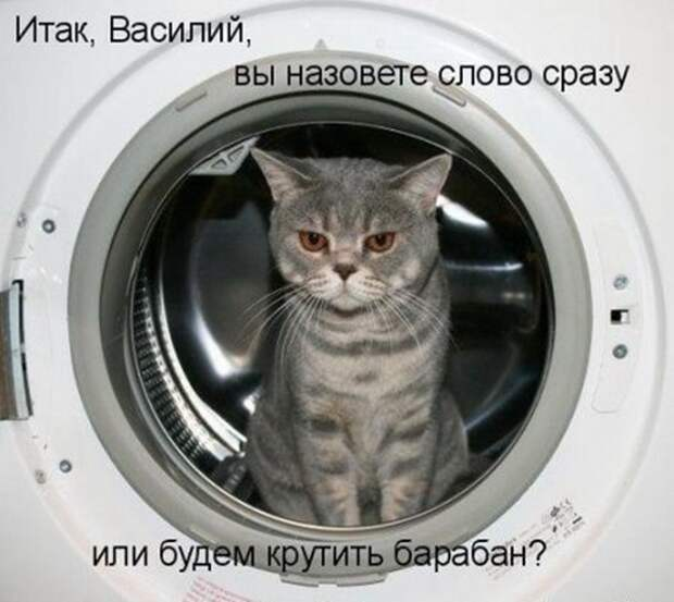 1362205134_1361809575_1361751239_k-39_resize