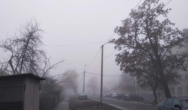 Подморозит: наПриморье идут дожди, туман ипохолодание