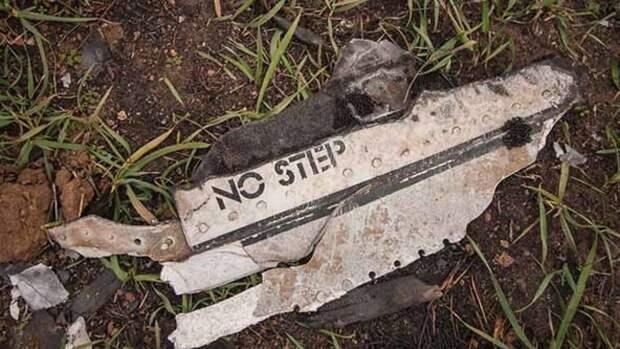 Голландцев «ткнули носом» в упущенную деталь в деле MH17