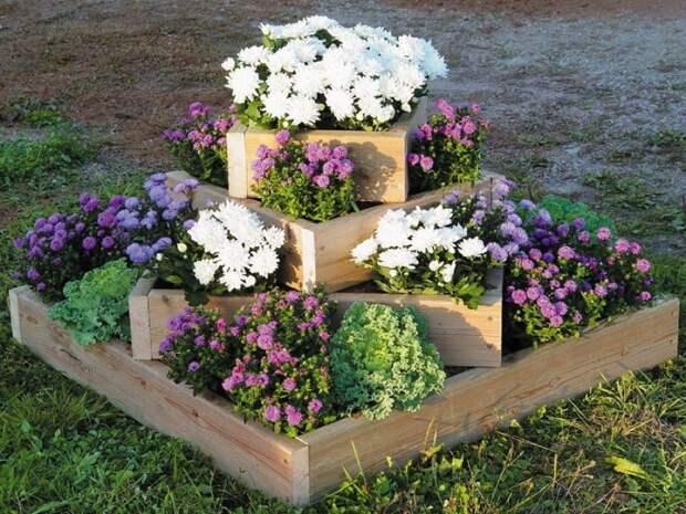 Севообороты для цветочных культур