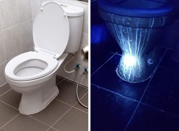 22 примера, как меняется окружающий мир под ультрафиолетовой лампой