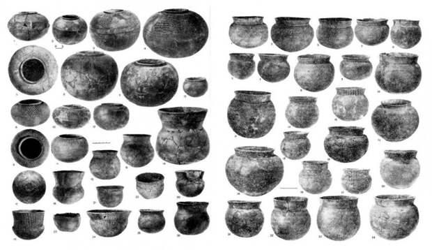 Фатьяновская археологическая культура и ДНК-генеалогия