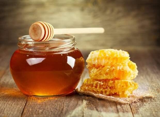 Это правильные пчелы – они варят правильный мёд! Рецепт медовухи