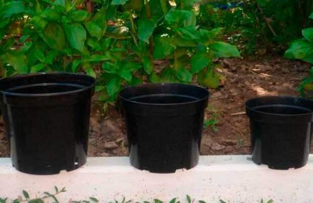 Горшки и контейнеры для комнатных растений