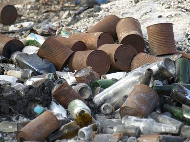 Севастопольских дачников оштрафовали за жалобы на мусор