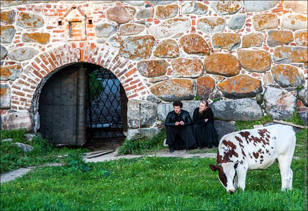 Экскурсия в Соловецкий монастырь
