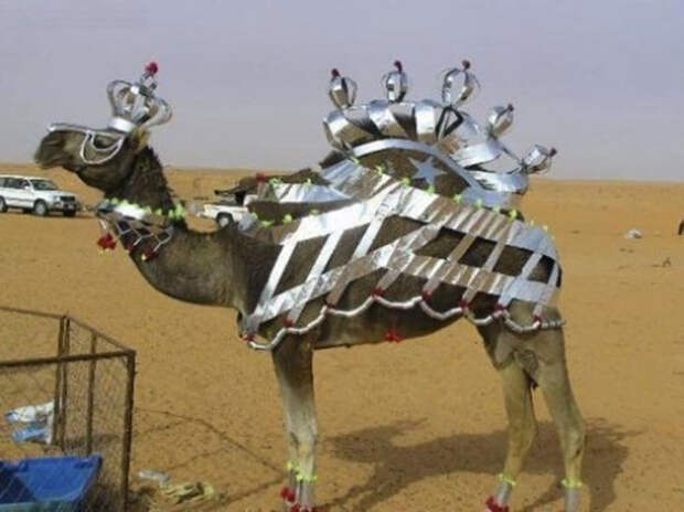 Ты кто такой, Дубай, до свидания: сводящая с ума и немного смешная роскошь