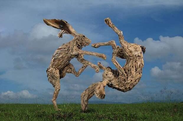 Кувыркающиеся зайцы.