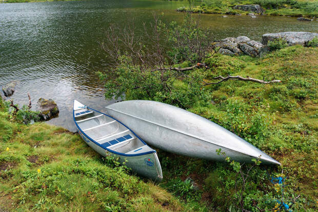 Невероятная Норвегия: Чудо-юдо Рыба-кит