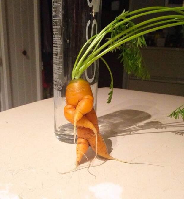9. Морковка с характером овощи, фрукиы