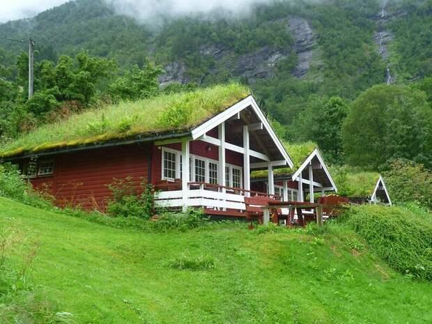 Любопытные факты о Норвегии