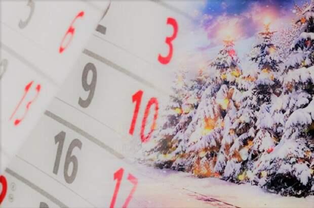 В Госдуме выдвинули альтернативу сокращению новогодних выходных