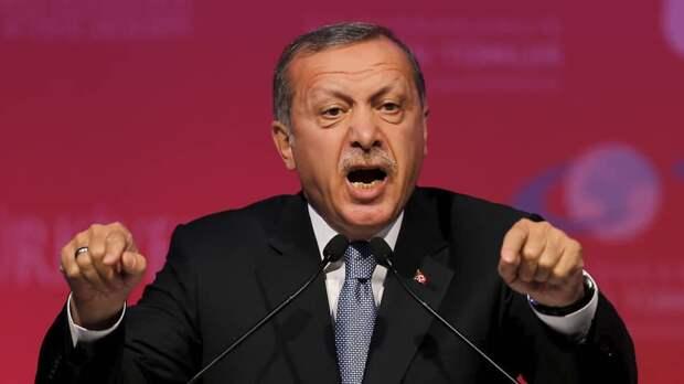 Фиаско диктатора. Турецкая лира в свободном падении