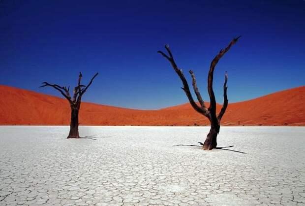 sossusvlei-in-namib-desert-namibia-igor-bilic-photography-610x412