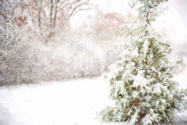 Метель и потепление ожидаются в Удмуртии в начале следующей недели