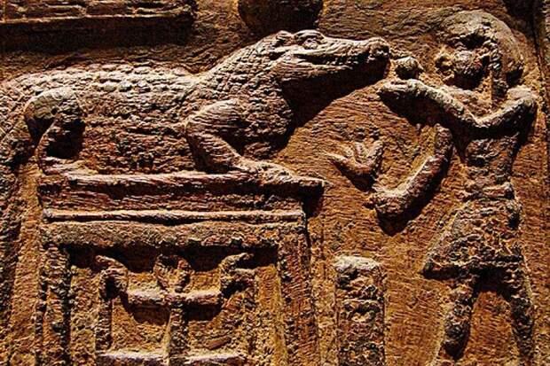 Древнеегипетский рельеф с изображением священного крокодила в Эль-Файюме