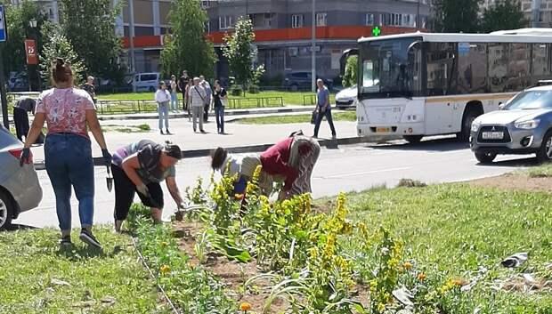 Рабочие приступили к высадке летних цветов на клумбе в Кузнечиках