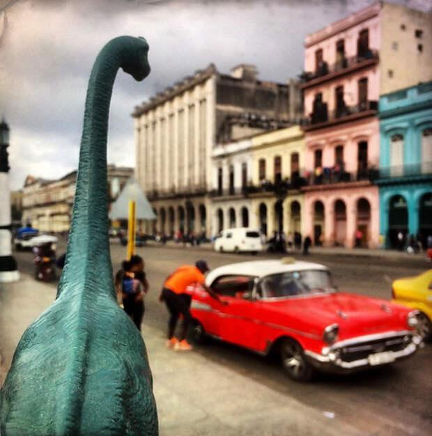 travel-photography-dinosaur-toys-dinodinaseries-jorge-sa_015