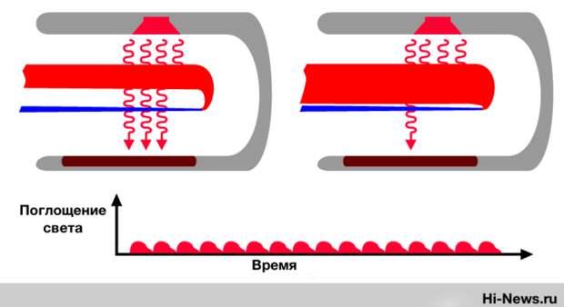 Что такое пульсоксиметр и как выявить коронавирус с помощью уровня кислорода в крови