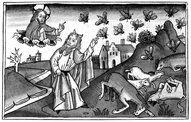 Слабоумие и отвары: чем лечились от всяких холер наши предки до изобретения анальгина и алка-зельтцера