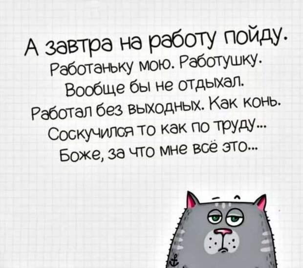 Смешные комментарии. Подборка chert-poberi-kom-chert-poberi-kom-21500317082020-10 картинка chert-poberi-kom-21500317082020-10