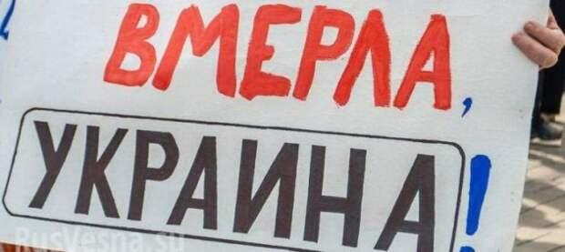 Депутат Рады: «Какая Европа? Мы вымираем!» (ВИДЕО)