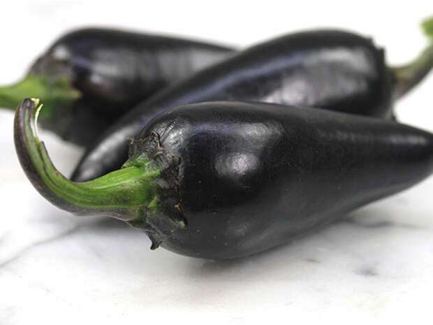 Черный венгерский перец: обаятельный острячок