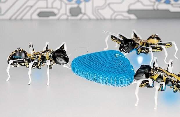 Бионические муравьи
