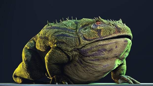 Ископаемая лягушка: она охотилась даже на динозавров