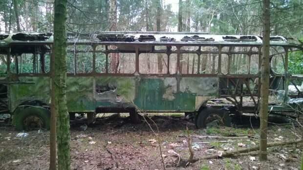 Целый автобус