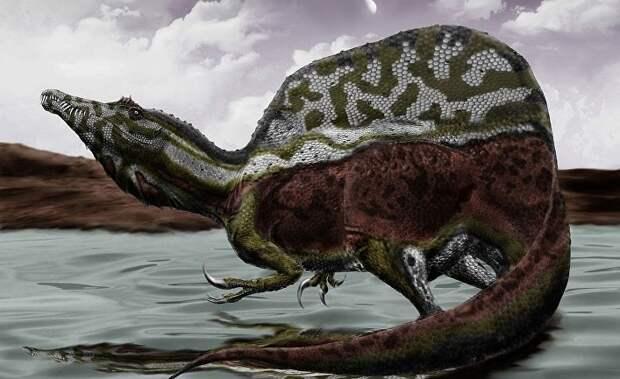 В Марокко обнаружили останки водоплавающего динозавра