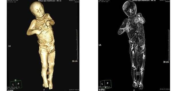 Ученые с помощью современных технологий сформировали изображения людей, погибших в Помпеях более 1900 лет назад.