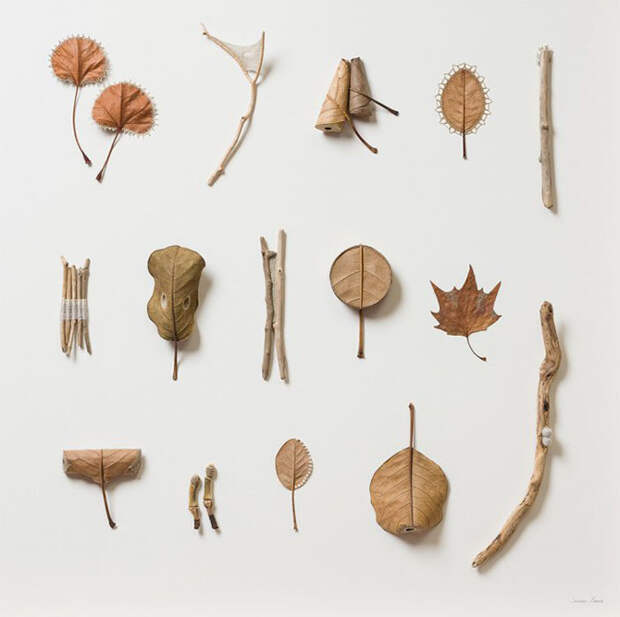 Лиственные скульптуры Сюзанны Бауэр