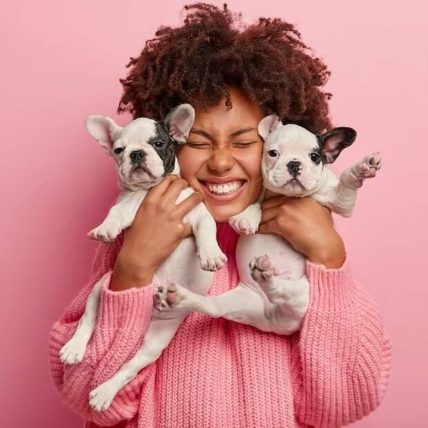 Новые исследования показывают, что собаки продлевают жизнь